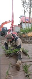 ouvrier espaces verts 1